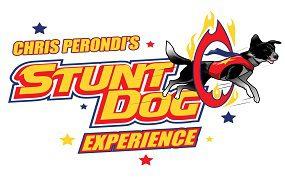 Stunt dogs thumb